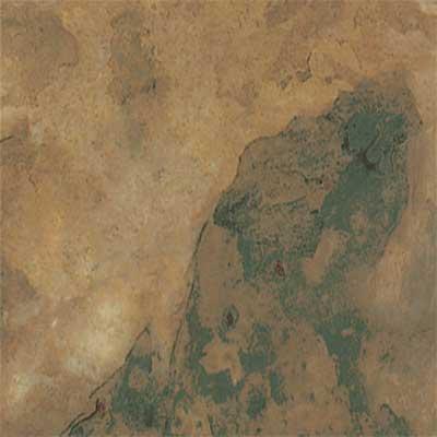 image of Amtico Slate 12 x 18 Autumn Slate Vinyl Flooring