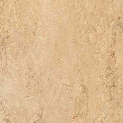 image of Forbo G3 Marmoleum Dual Tile 13 x 13 Barley Vinyl Flooring
