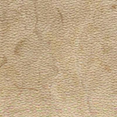 image of Amtico Spacia Stone 12 x 12 Bottocino Cream Vinyl Flooring