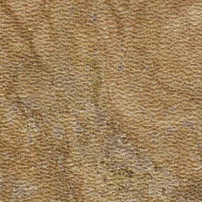 Amtico Spacia Stone 12 X 12 Bias Travertine Sand Vinyl